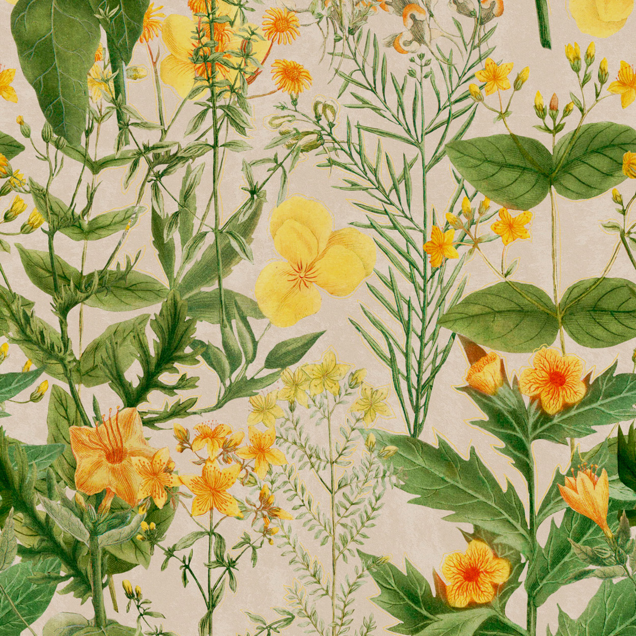Mind The Gap Mimulus Wallpaper